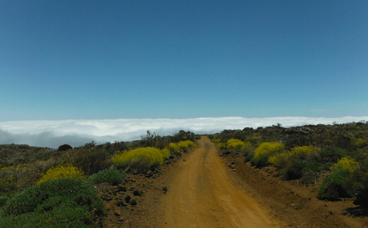 Things to do in Tenerife - driving ridge of the island