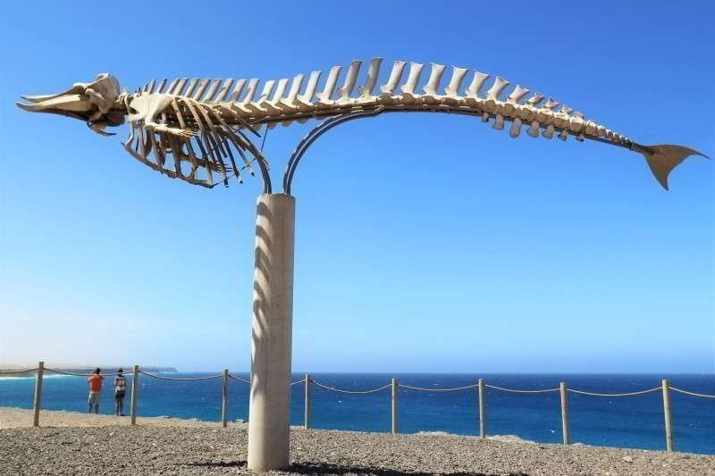 Fuerteventura things to do - Salt Museum