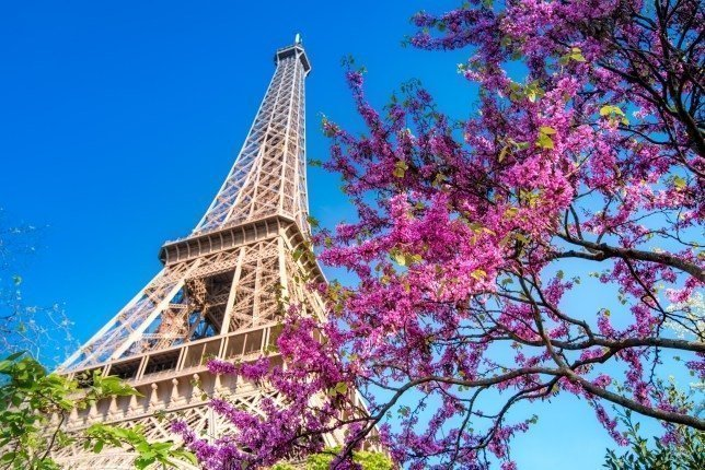 Things to do in Paris - Eiffel
