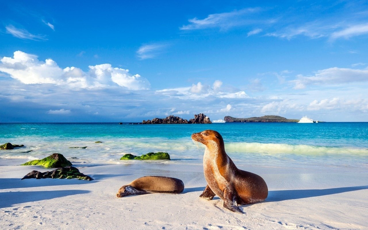 Things to do in Galapagos - beaches
