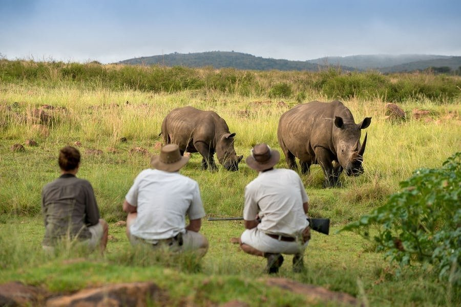 African Safari - be close to your tour guide.