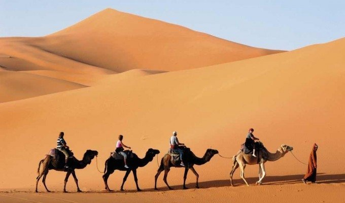 Camel Ride - one of the most popular things to do in Egypt