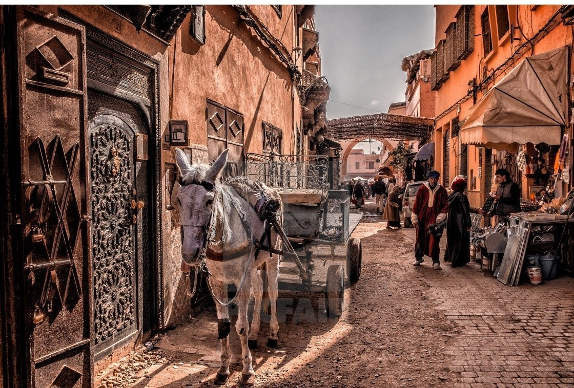 Things to Do in Marrakech - Medina