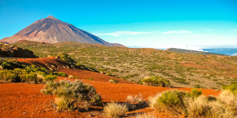 Emerald Princess Shore Tour in Tenerife
